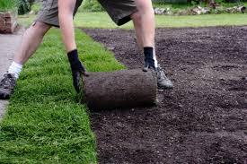 تنسيق حدائق استراحات